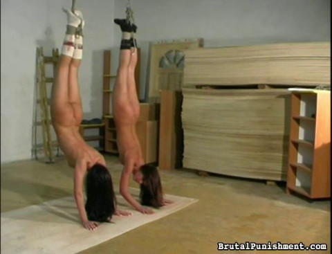 Twin Slaves, Two Times the Torment