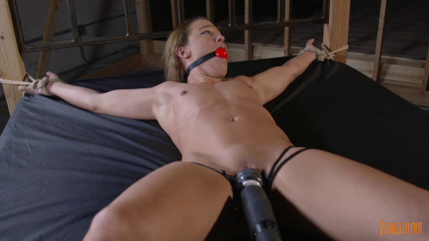 Fit Beauty Bound And Cumming