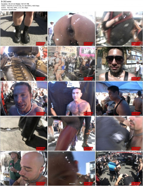 The Folsom Street Fair 2010 (2010)