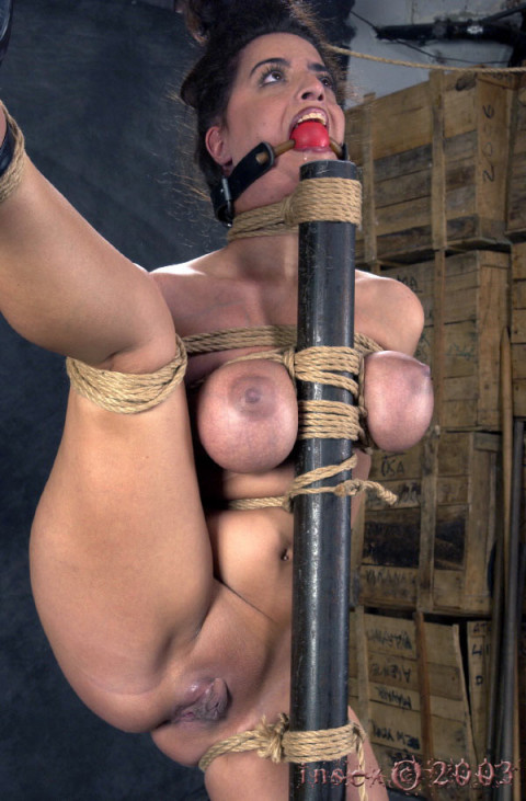 Insex - 813s Test (813)
