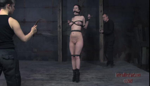 Infernal Restraints Consummate Vip Gold Lovely Beautifull Collection. Part TWO.