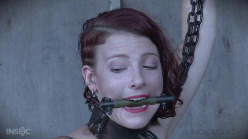 BDSM Scorpion - Kel Bowie - HD 720p