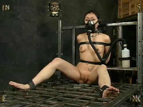 Asians BDSM Insex - 731 Jan 7th