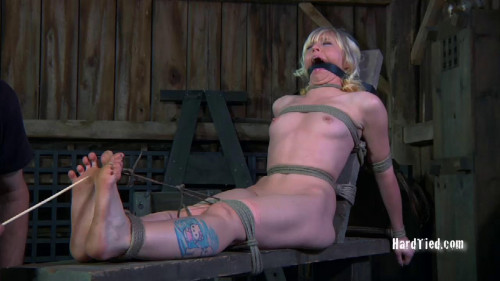 bdsm Privledges