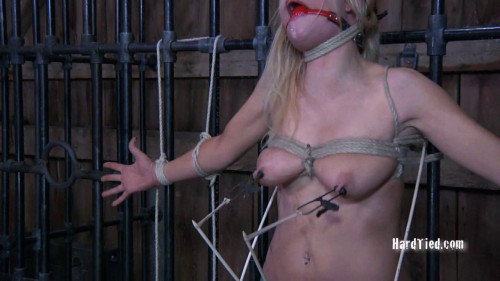 bdsm Barn Whore Rain Degrey Master
