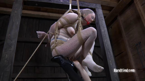 BDSM Caught in the Web Part Two Star