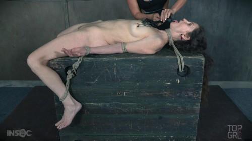 BDSM Pain Guinea Pig