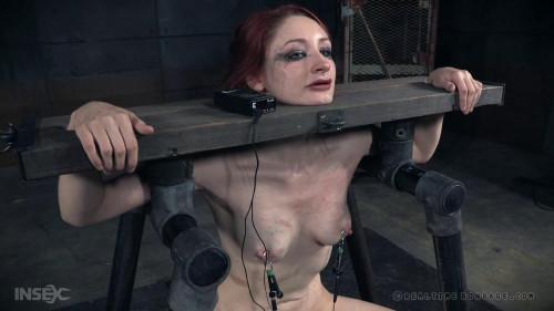 BDSM Violet Faces Her Final Scenes - Violet Monroe, Freya French
