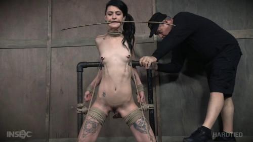 BDSM Ctrl-Alt-Orgasm - Lydia Black