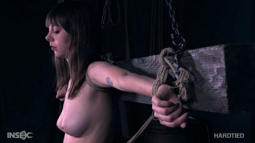 BDSM neophyte