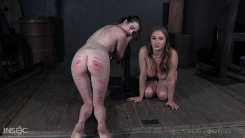 BDSM RTB His Mark Part 3 - Brooke Johnson