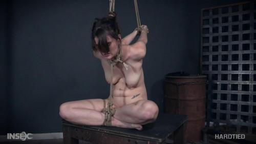 BDSM Bondage Flight