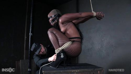 BDSM Such a Dahl