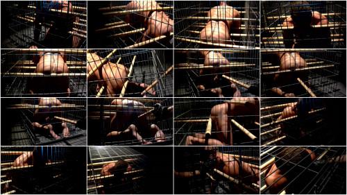 Gay BDSM Cage 2 1080