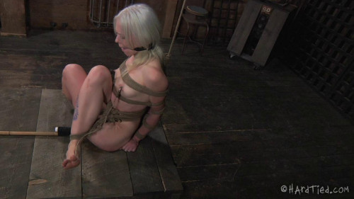 bdsm Sitting Pretty