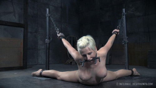 BDSM Dylan Phoenix Learns To Show Proper Respect