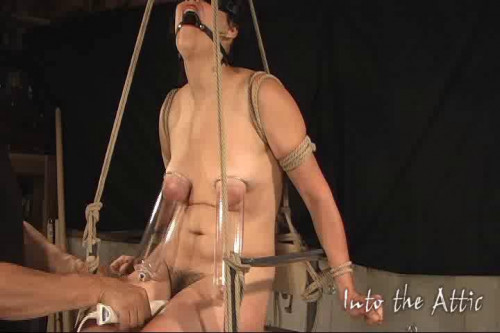 bdsm Vip The Best Beautifull Good Collection IntoTheAttic. Part 1.
