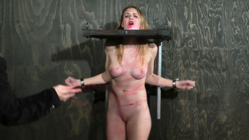 BDSM Brutalizing Miss Lane