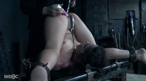 BDSM Va Va Vox