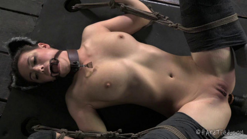 bdsm Cyd Black In Heat
