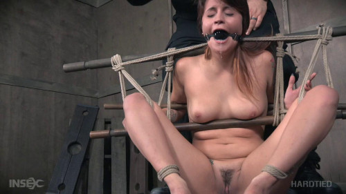 BDSM Rope Her & Pole