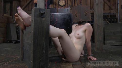 BDSM Training of H Part 5 - Hazel Hypnotic