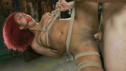 bdsm Daisy Ducati, Maestro-Hot Newbie is Brutally Fucked