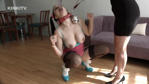 BDSM HD Bdsm Sex Videos Tindra  Pay and Display