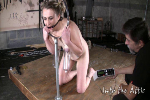 BDSM Mega Unreal Wonderfull Sweet Vip Collection Into The Attic. Part 4.