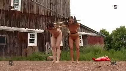 BDSM Insex - The Ripening