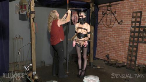 BDSM Hot Walker in Bondage extended
