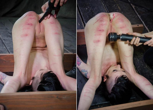 bdsm Hot kitty is ready to torture Part 3