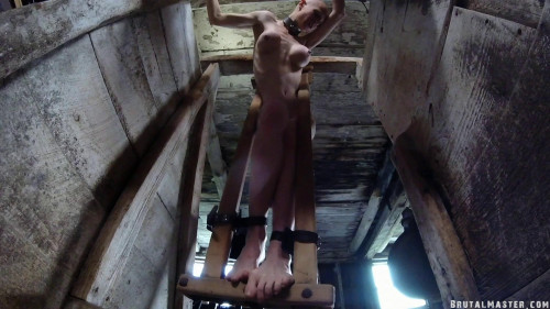 BDSM Welcome to hell- Greyhound Cow Stall Beating