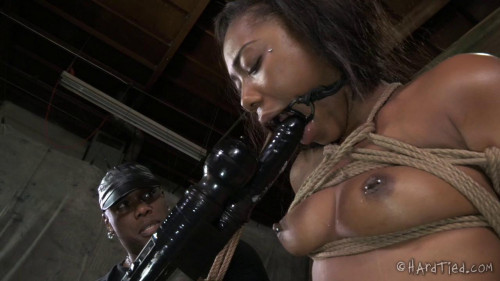 BDSM Chanell Heart - Bitch In A Bag - 720p