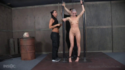 bdsm Tasty Part 1