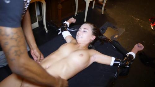 BDSM Tick Pack Pack1