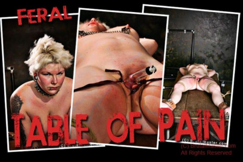 bdsm Feral Table Of Pain