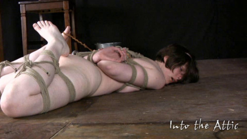 BDSM Into The Attic Vip Magic Mega Wonderfull Sweet Collection. Part 5.