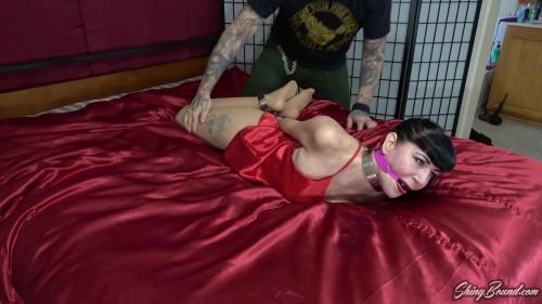 BDSM Nyxon Satin and Steel Part One