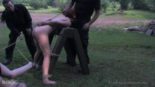 BDSM Ice Pony - part III