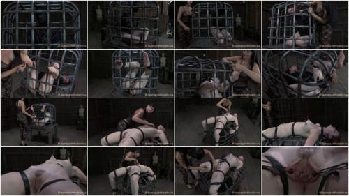 BDSM Cage Tales
