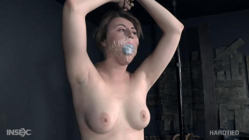 BDSM First Time FucksAll - Kinsley Anne