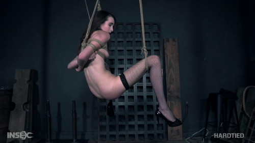 BDSM The sexy body of Brooke Johnson gets bound and broken.