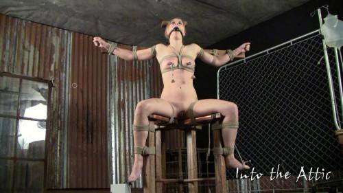 BDSM Danni Bondage