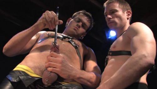 Gay BDSM Sounding Collection