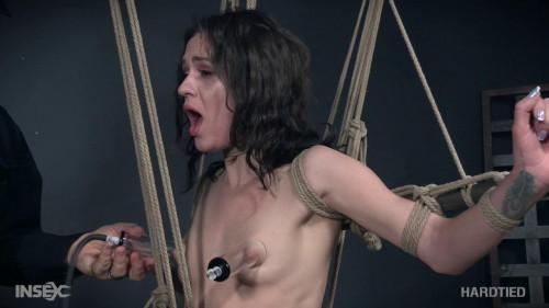 BDSM Pussy Hammock