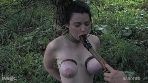 BDSM Getting Ahead