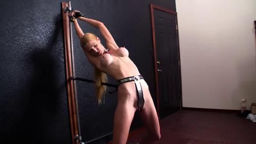BDSM Best New Bdsm Rachel Greyhound Collection