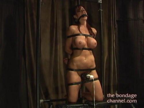 BDSM Orgasms Vol 81