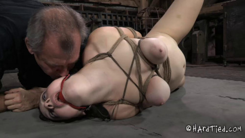 bdsm Crossing the Line Part Two - Dixon Mason